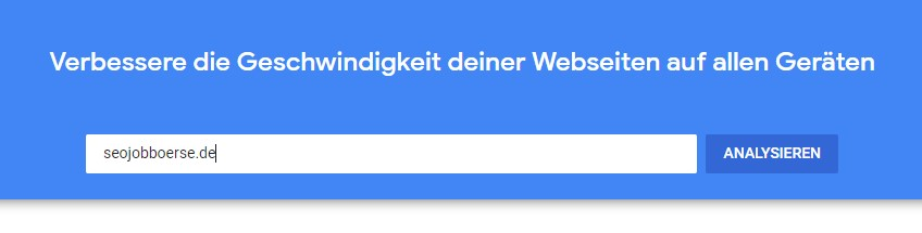 Google Page Speed Insights - Eingabemaske